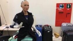 """""""Հենսոն ռոբոտիկս"""" ընկերության ռոբոտները"""