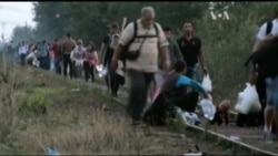 У Європу можуть хлинути 20 мільйонів біженців. Відео