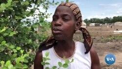 Nhamatanda- 6 meses depois do ciclone, milhares continuam em condições deploráveis