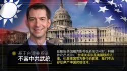 """阿肯色州联邦参议员汤姆·科顿(共和党):建议中国使馆街区更名为""""李文亮广场"""""""