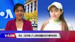 时事大家谈:专访:习近平家人个人资料泄漏案主犯牛腾宇的母亲