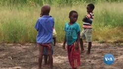 Escolas encerradas devido ataques armados no centro de Moçambique