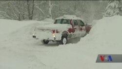 Останні дні року більшість американців змушені провести під супровід арктичних морозів. Відео