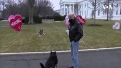 第一家庭宠物狗将接受适应性训练