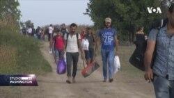 Izbjeglice - pitanje od velikog interesa uoči izbora u Njemačkoj
