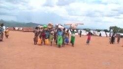 Mozambique: Impunzi zahungiye Malawi