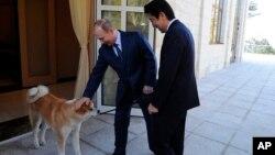 俄罗斯总统普京2月8日在索契会晤日本首相安倍晋三时轻拍安倍送他的爱犬