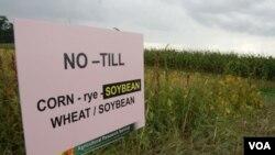 Sebagian besar tanah pertanian di AS ditanami tanaman rekayasa yang tidak perlu disemprot dengan berbagai insektisida, hasil panennya lebih banyak dan ongkos produksinya yang rendah karena tidak memerlukan pengolahan lahan. Dalam foto ini, tampak lahan p