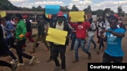 Some of the MDC activists who staged a protest of food shortages in Harare on Wednesday. (Courtesy Image, MDC Youth Assembly)