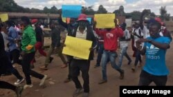 FILE: Some opposition youth members staging peaceful protest in Harare. (Photo: MDC Youth Assembly)