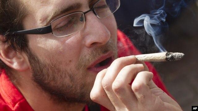 Los clubes podrán facilitar el uso de la marihuana para fines recreativos.