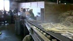 一双美国制造筷子的故事