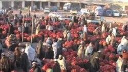 صادرات افغانستان در مقایسه با سال گذشته چهل فیصد افزایش یافت