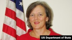 Katherine Dhanani is President Obama's nominee to serve as the new U.S. Ambassador to Somalia since 1991.