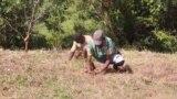 A Madagascar, une victoire climatique grâce au reboisement