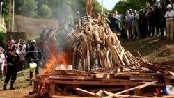 Des tonnes d'ivoire incinérées au Cameroun