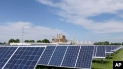 美国内布拉斯加州一个电厂内收集太阳能的太阳能板。(2018年5月31日)