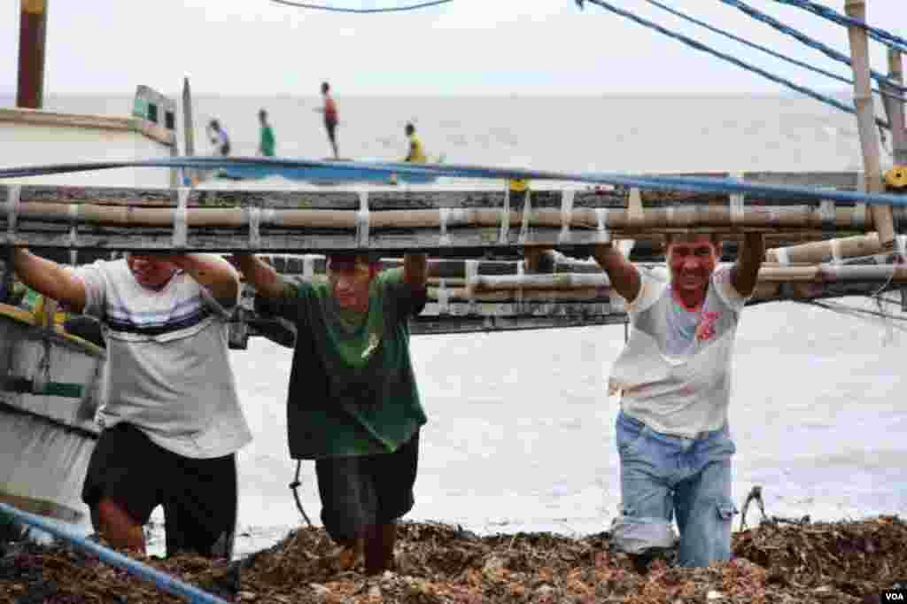 风暴要来了,大家齐心协力收好渔船。