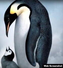 دیو قامت پرندے کی خیالی تصویر