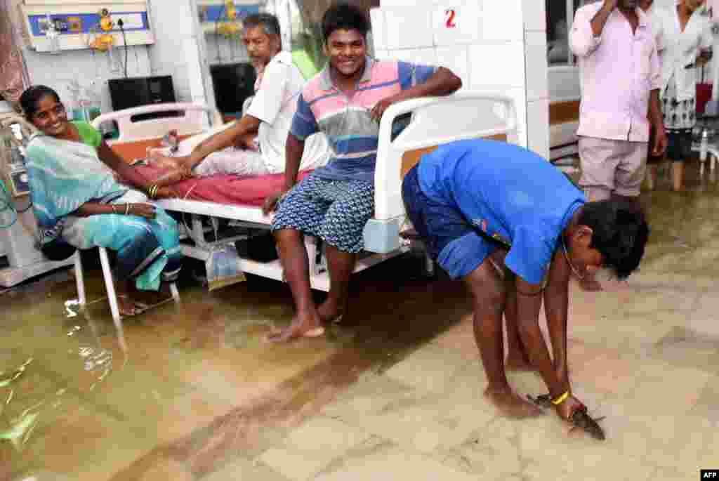 សាច់ញាតិអ្នកជំងឺម្នាក់ចាប់ត្រីនៅក្នុងបរិវេណមន្ទីរពេទ្យមួយដែលលិចទឹក នៅមន្ទីរពេទ្យ Nalanda Medical College and Hospital បន្ទាប់ពីមានភ្លៀងធ្លាក់យ៉ាងខ្លាំងមួយ នៅក្នុងក្រុង Patna រដ្ឋ Bihar ប្រទេសឥណ្ឌា កាលពីថ្ងៃទី២៩ ខែកក្កដា ឆ្នាំ២០១៨។