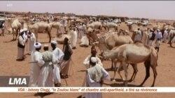 Les nomades soudanais, loin de la révolution