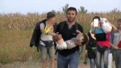 Блокадата во САД ќе се одрази врз бегалците во Европа