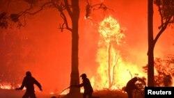 جنگلات میں لگی آگ بجھانے میں مصروف فائر بریگیڈ کے اہلکار۔ (فائل فوٹو)
