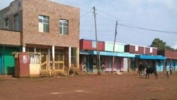 Moromiin Oromiyaa Keessaa Guyyaa Lammaffaaf Itti Fufe