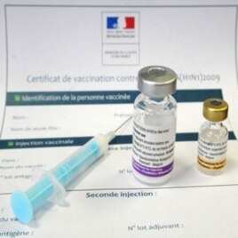 Cameroon Launches Massive Swine Flu Vaccine Campaign