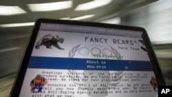 俄羅斯黑客Fancy Bears的網站(美聯社)