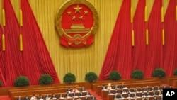 中国人大代表出席全国人大会议(资料照片)