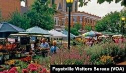 Fayetville, Arkansas