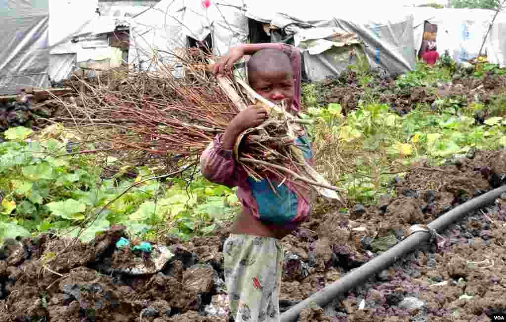 Le camp de réfugiés de Mungunga, près de Goma (Nicolas Pinault/VOA)