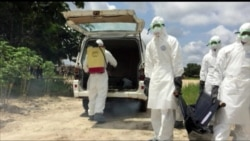 Rapid Testing is Crucial in Ebola Virus Detection and Management