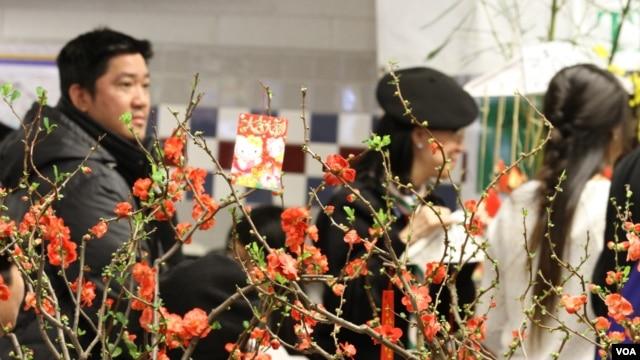 Hội chợ Tết là một hoạt động của cộng đồng người Việt ở Washington và các vùng lân cận trước mỗi dịp xuân về hàng năm để mọi người mua sắm và gặp gỡ cũng như kết nối cộng đồng. (Ảnh: VOA/Hồng Hoa)
