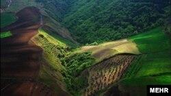 قطع درختان و تغییر کاربری زمین ها، موجب از بین رفتن جنگل های شمال ایران شده است