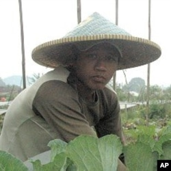 A former street kid works in the fields at The Learning Farm