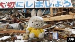 Con thú nhồi bông nằm giữa những đống đổ nát ở Kesennuma, Nhật Bản sau thiên tai