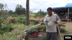 So Vun, 54, is a former Khmer Rouge soldier who lives in Por Tang Su village, Por Ya Kar commune in Pailin, is pictured watering his garden, August 04, 2016. (Neou Vannarin/VOA Khmer)
