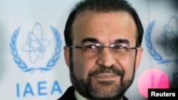 Реза Наджафи (IAEA)