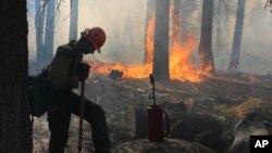 지난 4일 미국 서부 요세미티 국립공원에서 소방관들이 산불을 진압하고 있다.