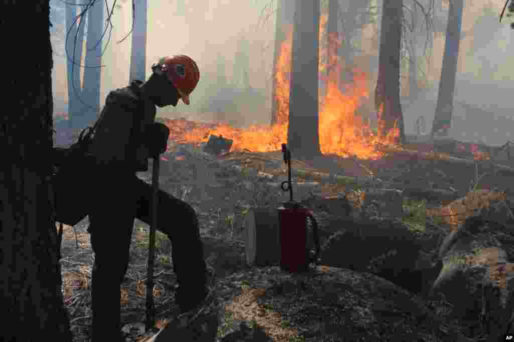 A Hotshot fire crew member rests near a controlled burn operation at Horseshoe Meadows, as crews continue to fight the Rim Fire near Yosemite National Park in California, Sept. 4, 2013. (U.S. Forest Service, Mike McMillan)