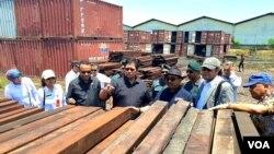Komisi IV DPR RI, Gakkum KLHK, Dinas Kehutanan Provinsi Jawa Timur, dan BBKSDA Jawa Timur, meninjau barang bukti kayu merbau ilegal hasil penyitaan total 440 kontainer (foto VOA/Petrus).