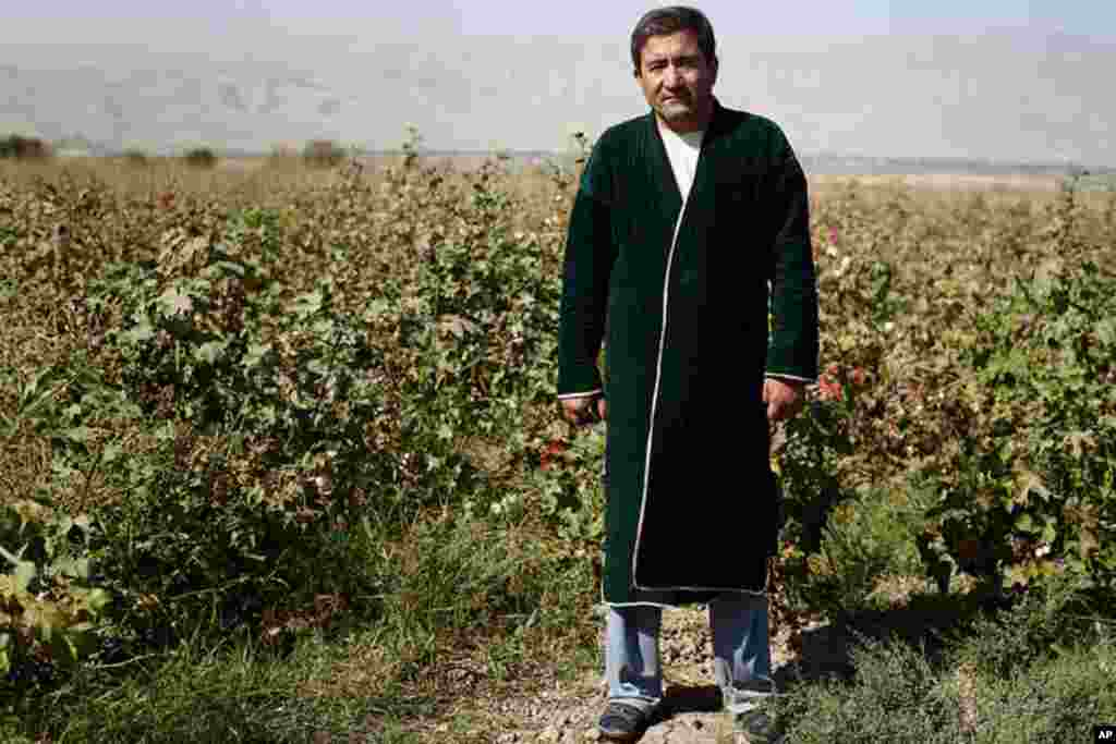 A cotton farmer outside of Dushanbe. (VOA - Y. Weeks)