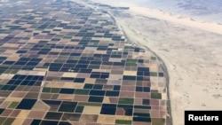 加州干旱严重