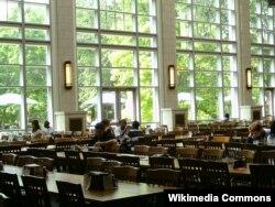 미국 밴더빌트대학교 학생들이 교내 식당에서 점심을 먹고 있다.