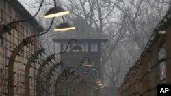 Polonya'daki Auschwitz-Birkenau toplama kampında Naziler tarafından 300 bin Yahudi öldürüldü
