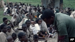 Feeding the hungry at Korem, Ethiopia, June 1985