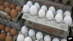 شہر قائد کی بستیاں جہاں انڈے کھانا سہانا خواب ہے