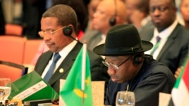 Nigeria's President Goodluck Jonathan (R) and his Tanzanian counterpart attend a sessions marking the 50th anniversary of the African Union in Addis Ababa, May 25, 2013.